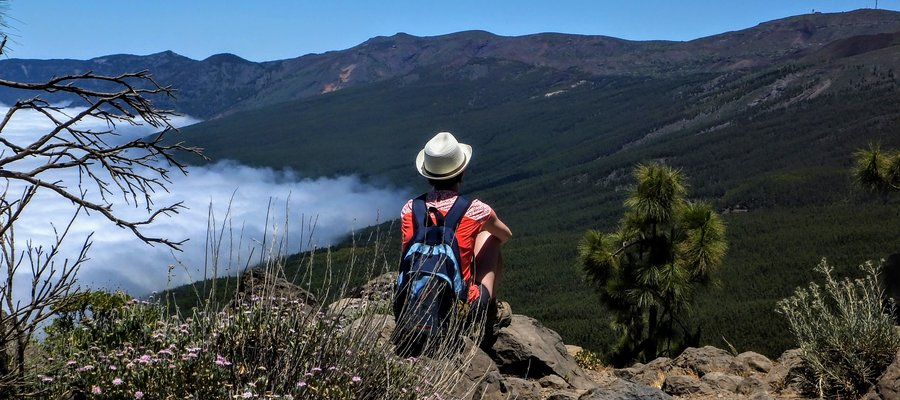 Contemplating the nature in Teide National Park