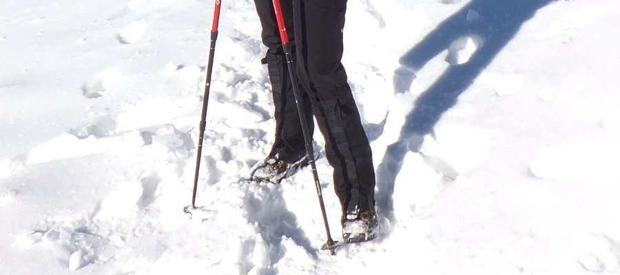 The North Face Gore-Tex shoe gaiters