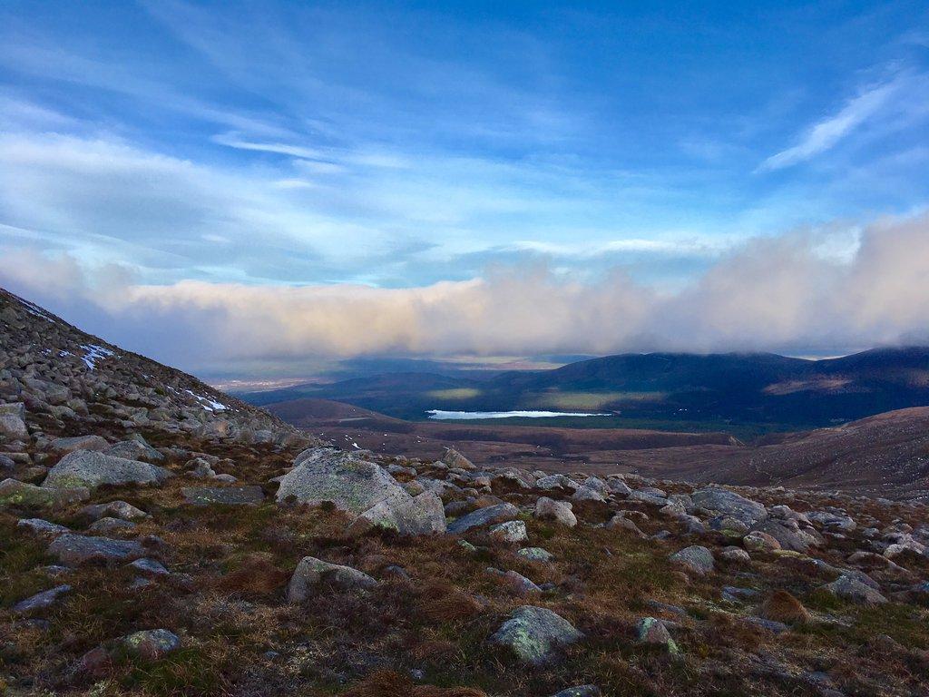 Expedition Wildlife_Cairngorm Mountains Scotland.jpg