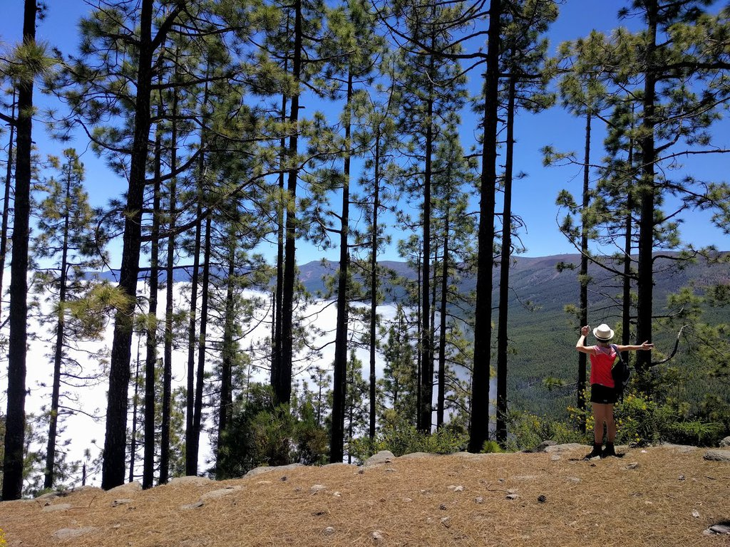 Freedom in the mountains - hiking in Teide National Park