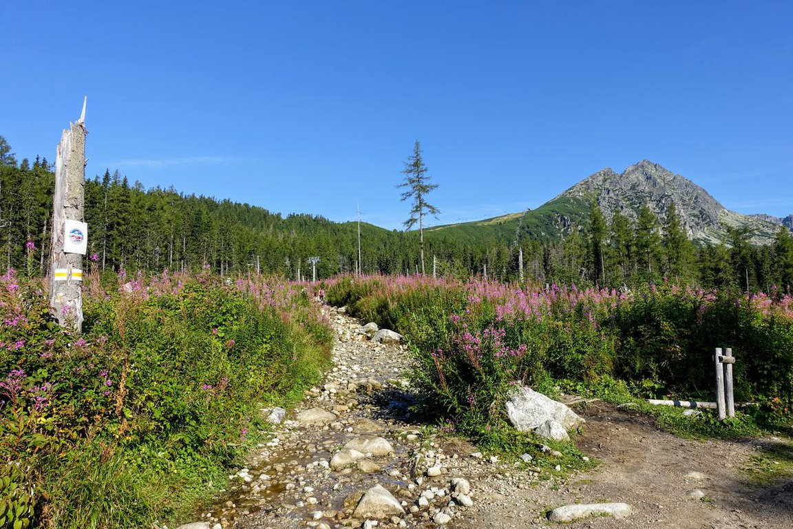 Furkotská_Valley_High_Tatra_mountains_Slovakia.JPG