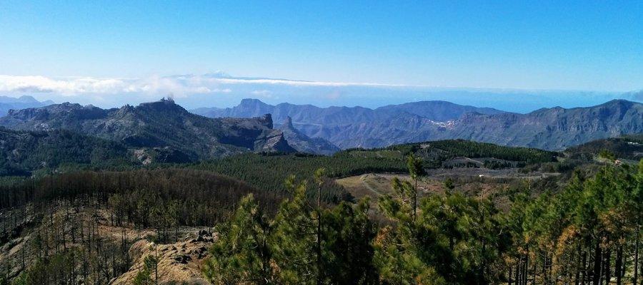 Hiking in Gran Canaria mountains