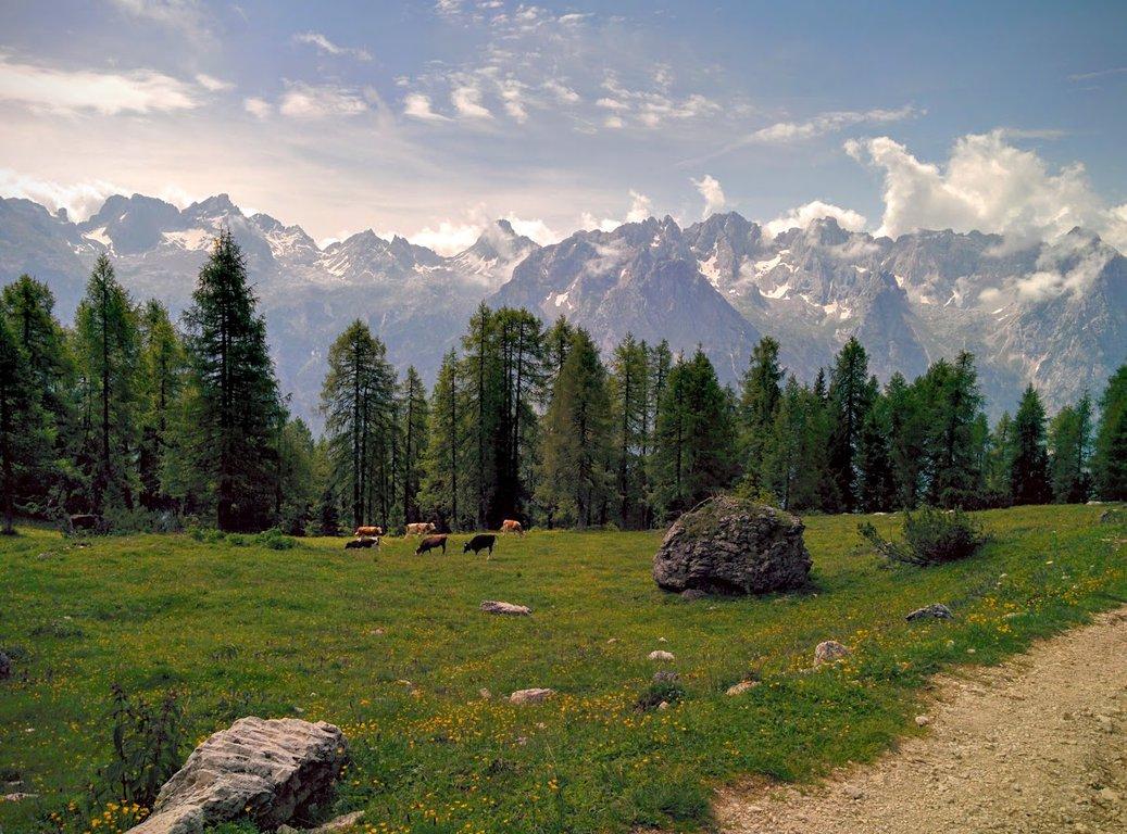 Hiking trail near Misurina - Rifugio Citta di Carpi