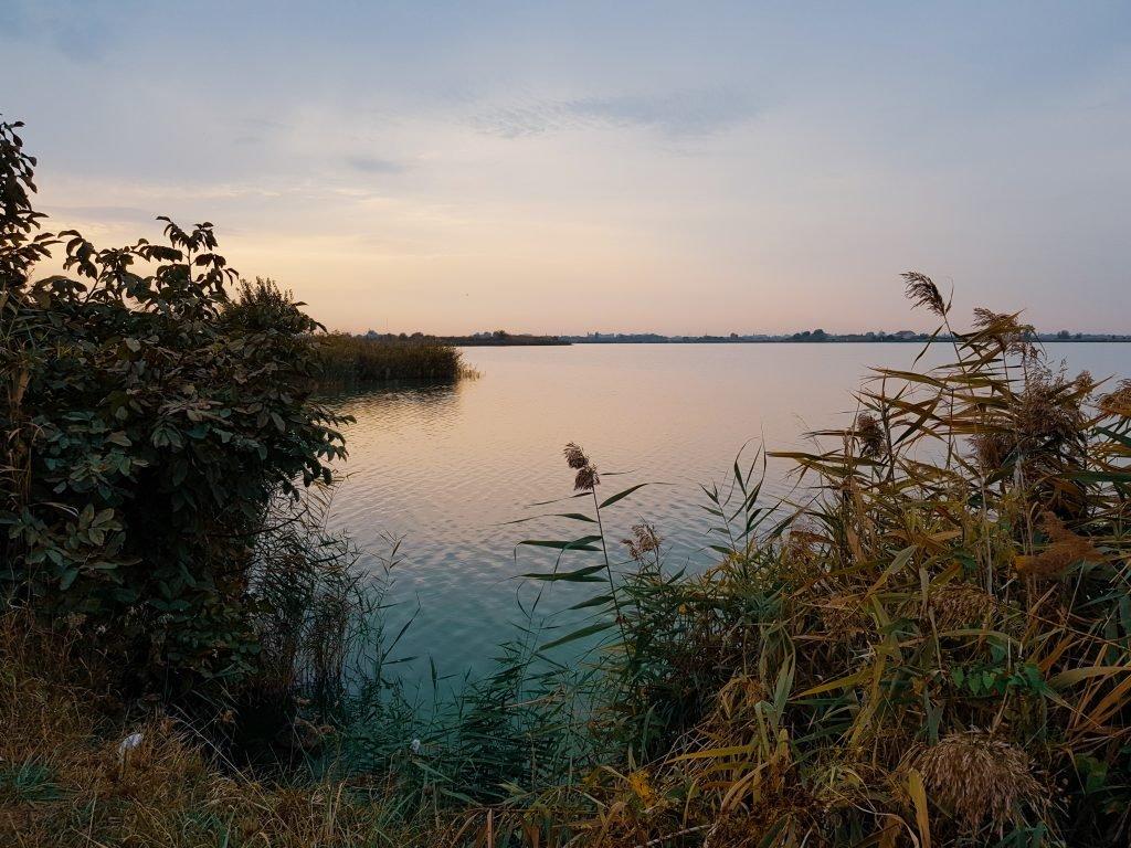 Lake Palic, Serbia.jpeg