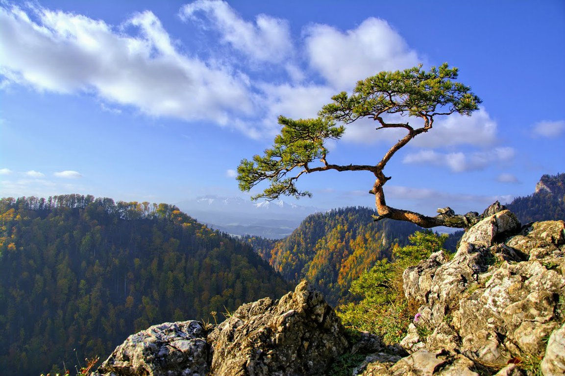 Pieniny mountains in southern Poland