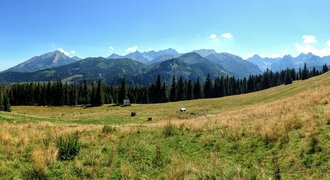 Rusinowa Polana clearing in Tatra mountains, Poland