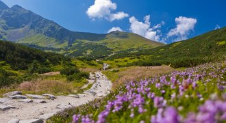 Summer in Tatra National Park, Poland