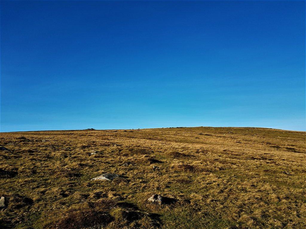 dartmoor hillside.jpg